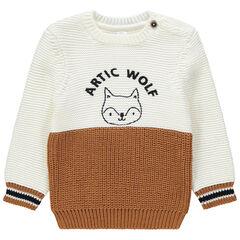 Gebreide trui in twee kleuren met vos