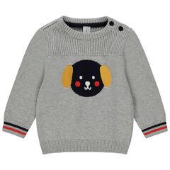 Pull en tricot avec chien en jacquard , Orchestra