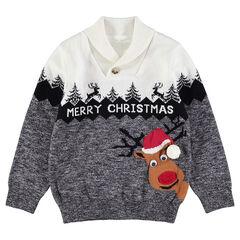 Kersttrui van tricot met rendier en krul van jacquard