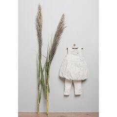 Geboortesetje jurk legging in biologisch katoen